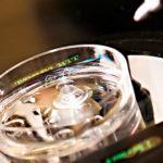 Заморозка яйцеклеток при ЭКО: стоимость, гарантия зачатия