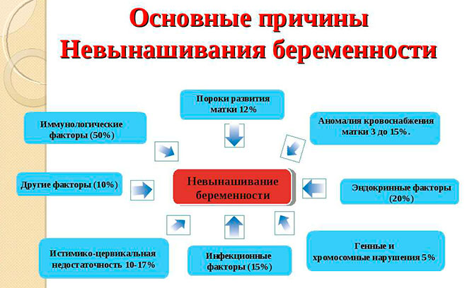 инфографика невынашивания беременности