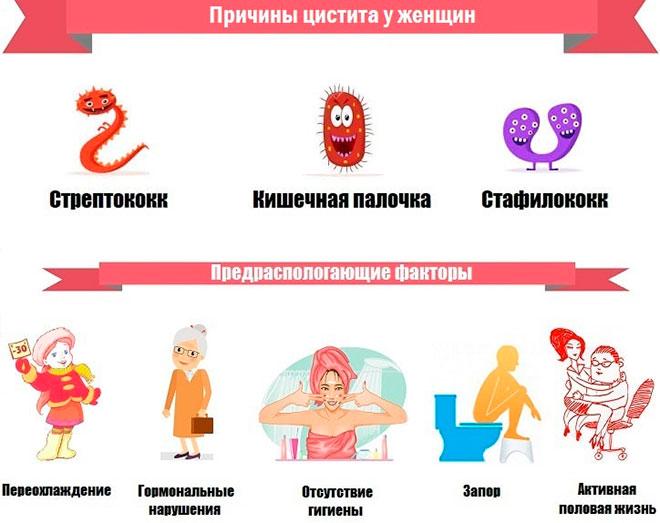 инфографика причин цистита у женщин