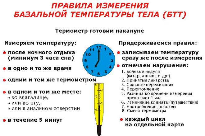 общие правила измерения базальной температуры для быстрой беременности