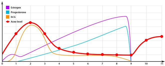 график роста гормонов беременности