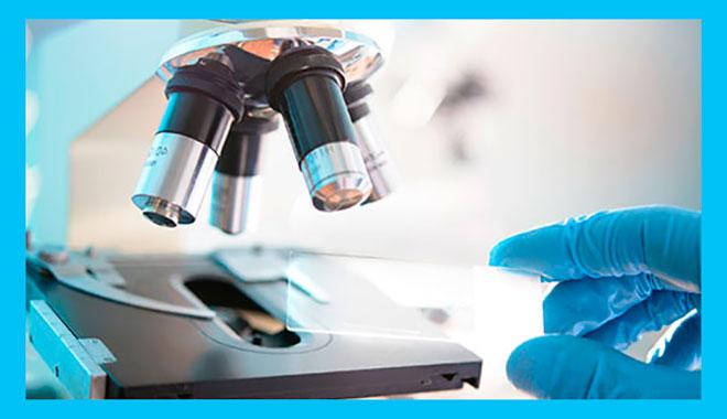 микроскопическое исследование количества лецитиновых зерен в секрете простаты