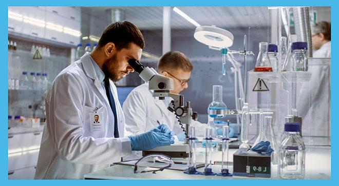 эмбриолог отбирает лучшие эмбрионы под электронным микроскопом