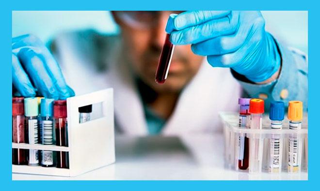 доктор сортирует кровь в пробирках для анализа
