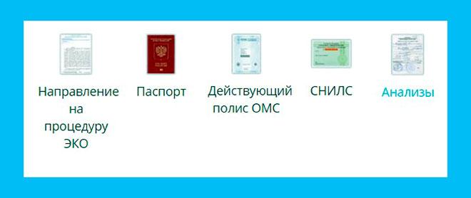 направление на ЭКО, паспорт, полис ОМС, СНИЛС, анализы