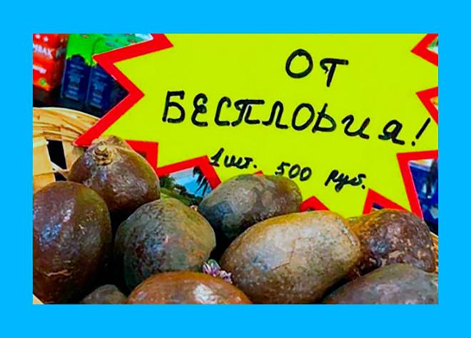 орехи мохилхин продается в корзинке в аптеке поштучно